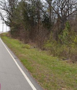 0 Red Bird Road, Albemarle, North Carolina 28001, ,Land,For Sale,Red Bird Road,1002