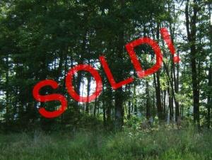 North Carolina, ,Land,For Sale,1003