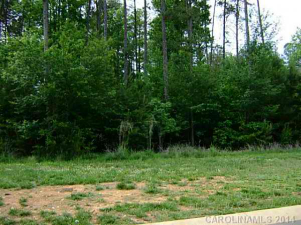 North Carolina, ,Land,For Sale,1004